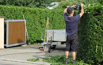 professional Richmond Hill hedge cutting services