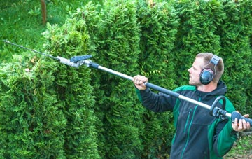 Richmond Hill hedge trimming costs