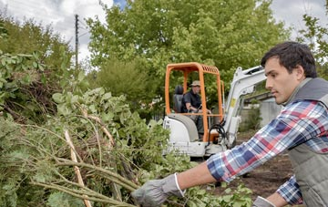 Richmond Hill tree removal costs