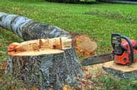 free Richmond Hill tree felling quotes