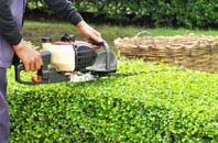 Richmond Hill hedge trimming services