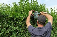 free Richmond Hill hedge trimming quotes