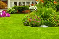 Richmond Hill lawn care service