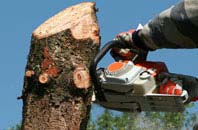 free Richmond Hill tree removal quotes